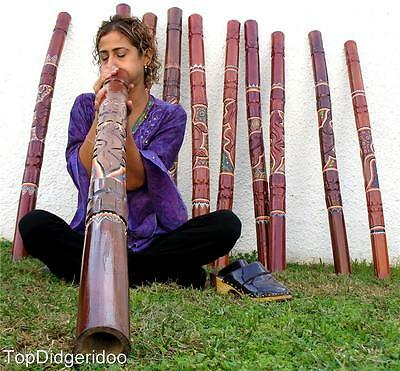 """47""""120cm Didgeridoo+Bag TURTLE HAND-CARVED DOT PAINTED Free Shipping Worldwide"""
