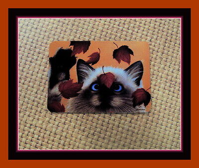 Cat Pawing At The Fall Leaves - Refrigerator Magnet