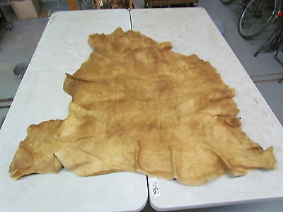 "Moose Hide Native American Dark Color Home Tanned Hide 54"" By 53"" Soft, Good Sew"
