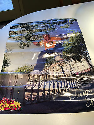World Industries Daewon Song Poster, 2-Sided Sluggo, Mcbride, Shiloh