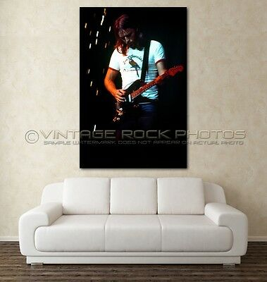David Gilmour, Pink Floyd Poster Photo 20x30 inch Live 1977 Concert Pro Print 47