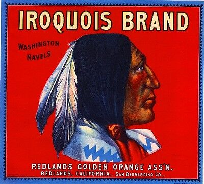 Redlands Iroquois Orange Citrus Fruit Crate Label Art Print