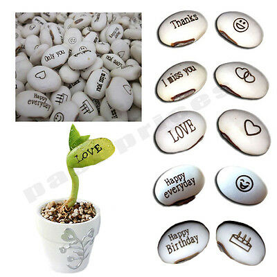 100PCQS DIY Magic Bean Seed Plant Love Gift Growing Message WordVE