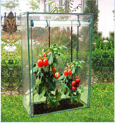 Tomato Vegetable Grow Bag Outdoor Garden Plastic Mini Greenhouse with PVC Cover