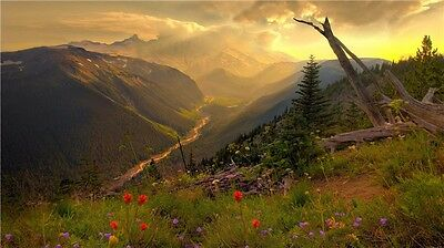 """Lake Mountains Forests Sky Waterfall Landscape Nature Art Poster 44/""""x24/"""" 026"""