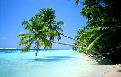 "Hawaii Beach Landscape Paradise Beach Coconut Palm Tree Poster 32/""x24/"" 021"
