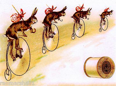 Bunny Rabbits Bicycles J & P Coates Victorian Trade Cards Poster Advertisement