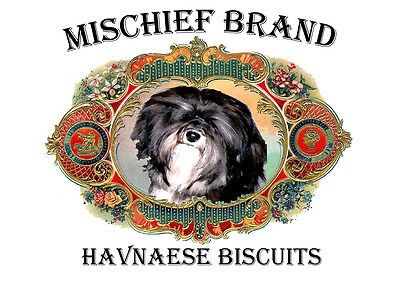 Havanese  Biscuit Tin -  Biscuit  Treats and Collectible Tin  - Black and White