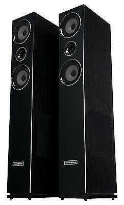 Altavoces Cajas Sistema Audio Hifi Torre Monitores Woofer Dj Pa Home Cinema 300W