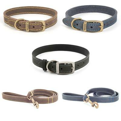 Ancol Timberwolf Leather Dog Puppy Collar OR Lead Sable Brown Blue Navy