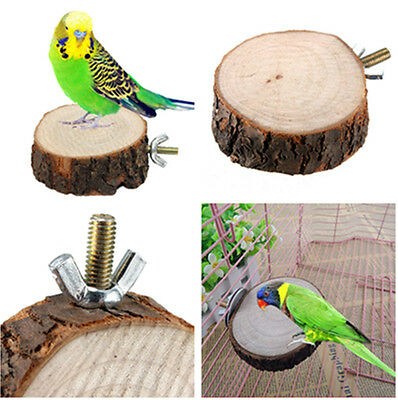 Round Wooden Coin Parrot Bird Cage Perches Stand Pet Budgie Hanging Toy 6cm PAT