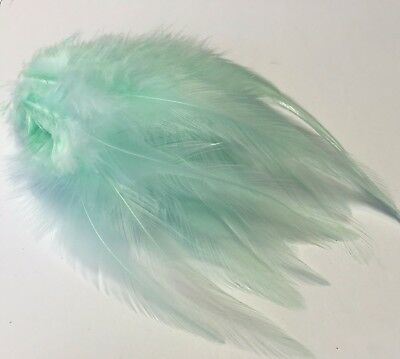 20 Mint Green rooster feathers 9-15cm DIY Craft Millinery Dream Catcher
