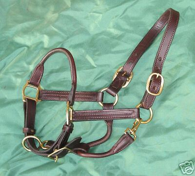 "NEW BROWN Rolled nose Leather Halter  w/snap COB size 1"" triple stitched"
