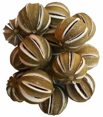 Dried Split Green Oranges - 250g Bag - Decorative - Christmas Wreaths