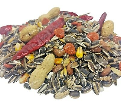 PARROT FOOD - (500g - 15kg) - Bird Food bp Caged Pet Sunflower Seed Nuts Feed kg