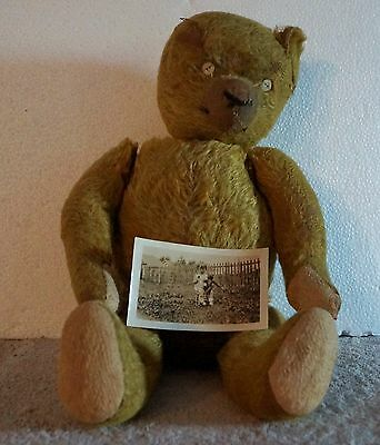 "Antique Rare Cinnamon Mohair 20"" Jointed Teddy Bear Straw Filled Photo of Child"