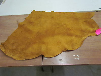 "Moose Hide Native American Dark Color Home Tanned Hide 40"" By 32"" Small, Sewing"