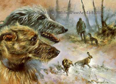 Lurchers Dog, Christmas cards pack of 10 by Mick Cawston. B38X