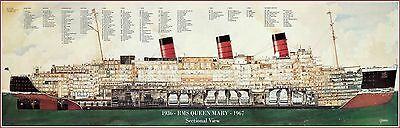 """Rms Queen Mary Sectional View Full Color Poster 11"""" X 32"""" Vintage Reproduction!"""