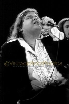 Meat Loaf, Photo 8x12 or 8x10 in 1980's Vintage Live Concert Tour Pro Print 11b