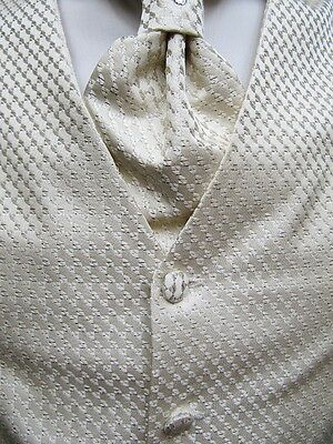 Mariage Gilet Homme*24*