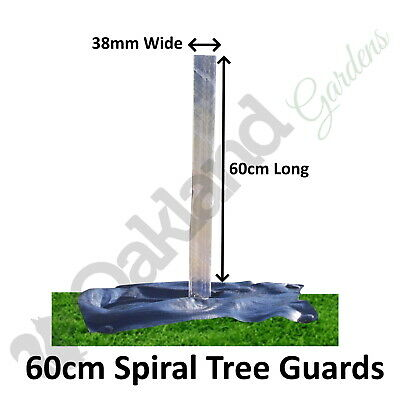 5 X ( 60CM X 38MM ) Clear Spiral Tree Guards Shelters Protectors Rabbit Hedge