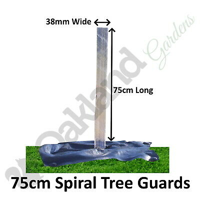 5 X ( 75CM X 38MM ) Clear Spiral Tree Guards Shelters Protectors Rabbit Hedge