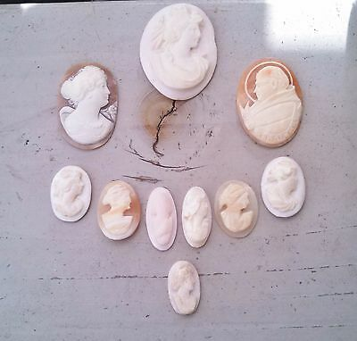 Fine Vintage Carved Shell Cameo Lot of 10
