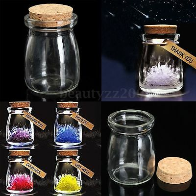 100ML Small Clear Glass Bottle Storage Jar Wish Vial Container With Cork Stopper