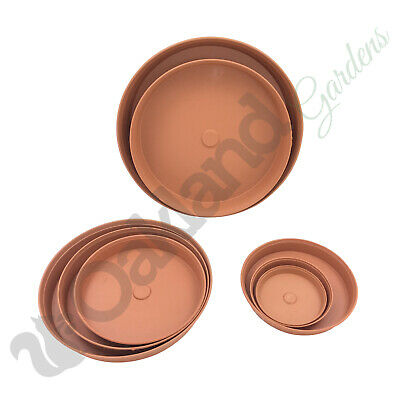 Strong Plant Pot Saucer Drip Tray Terracotta Plastic Deep High Sided 13cm - 37cm