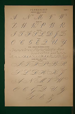 1886 Antique Print ~ Penmanship Classified Forms Of Capitals Angular