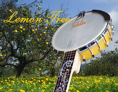 "5string Banjo ""Lemon Tree""-- Banjomanufaktur"