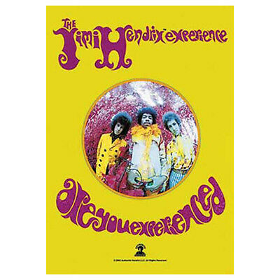 JIMI HENDRIX Are You Experienced Tapestry Cloth Poster Flag Wall Banner 30 x 40