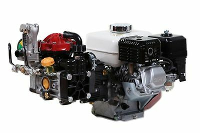 Hypro D30 Diaphragm Pump and Honda GX160QH Gas Engine Assembly