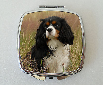 Cavalier King Charles Spaniel Compact Mirror Valentines Mothers Day Gift (Tri)