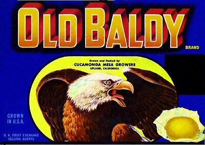 Upland Old Baldy #2 Eagle Lemon Citrus Fruit Crate Label Art Print