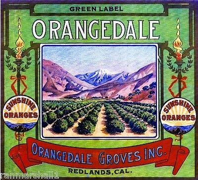Redlands Orangedale Green Label Orange Citrus Fruit Crate Label Art Print