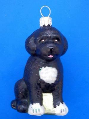 Portuguese Water Dog European Blown Glass Christmas Tree Ornament Hunde