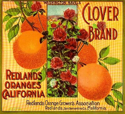 Redlands San Bernardino County Clover Orange Citrus Fruit Crate Label Art Print
