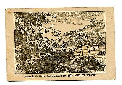 Victorian Trade Card DR SETH ARNOLDS BALSAM puzzle card find Doctor