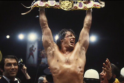 Rocky Ii Sylvester Stallone Holding Boxing Belt Barechested 24X36 Poster
