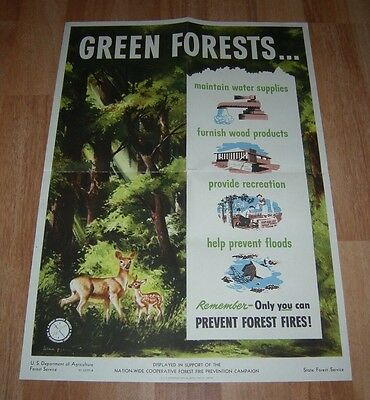 Smokey Bear 1950 Green Forests Vintage Poster State Forest Service