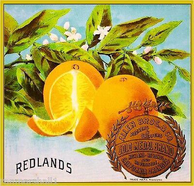 Redlands Gold Medal Orange Citrus Fruit Crate Label Art Print