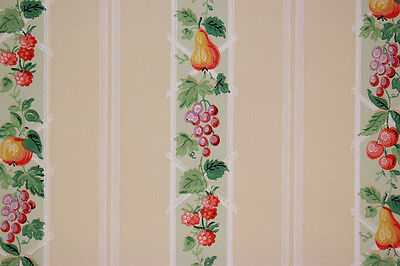 1930's Antique Vintage Wallpaper Grapes Pears Raspberries Apples on Stripe