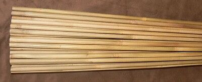 "100 Bamboo kyudo arrow shafts45.3""60-65 # shafts only"