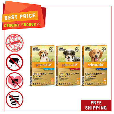 ADVOCATE Heartworm Flea Worm treatment for Dogs 6 Pipettes AU Seller