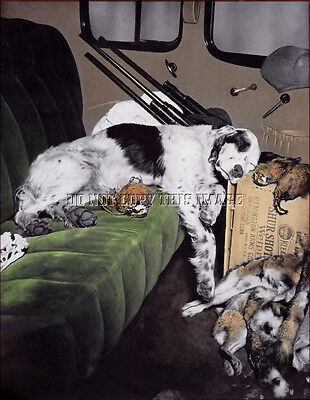 Antique Hunting 8X10 Photograph Reprint   Tired English Setter Bird Dog
