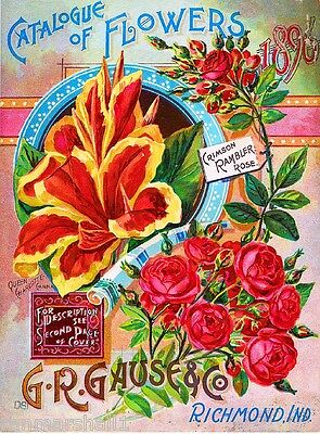 1896 G.R. Gause Rose Catalogue Vintage Flowers Seed Packet Advertisement Poster