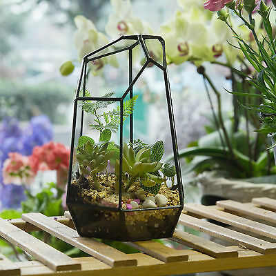 Irregular Glass Geometric Terrarium Box Tabletop Succulent Plant Planter