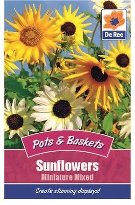2 Packs of Sunflower Miniature Mixed Seeds, Approx 15 Seeds per pack